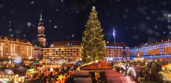Christmas Lights Limo